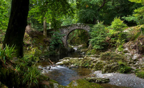Stream flowing under a stone arched bridge in a forest in the Mourne Mountains/