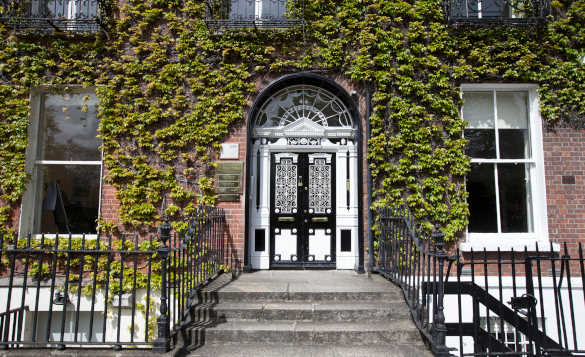 Steps leading to the entrance of a ivy clad Georgian townhouse in Dublin/