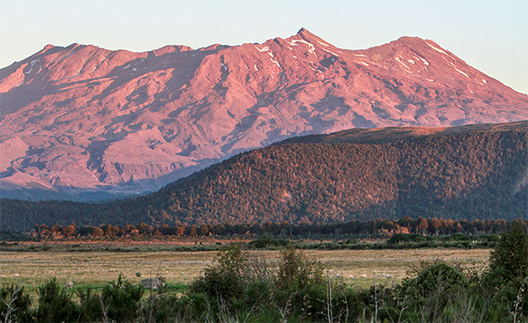 view across grassland towards a red mountain lit by early morning sun/