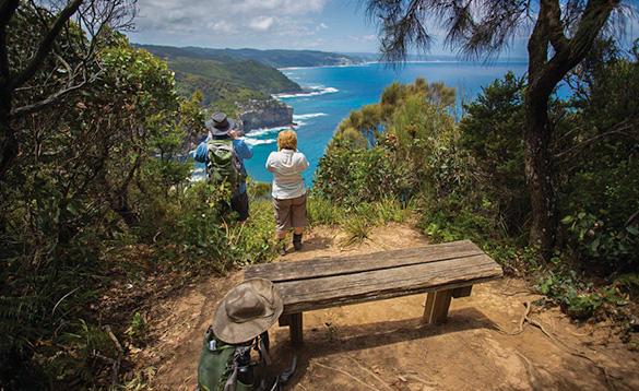 Great walking and hiking trails to suit all/