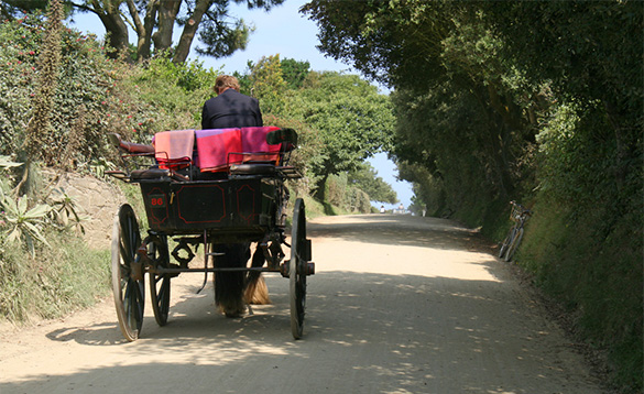 Horsedrawn carriage on the island of Sark/