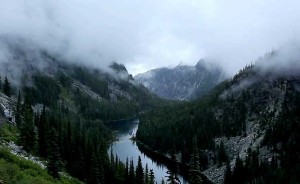 river meandering through fir tree covered mountains/