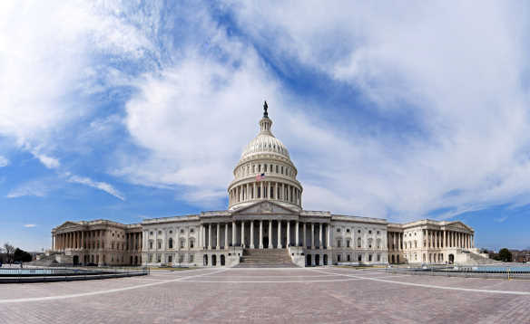 The white Capitol Building in Washington DC/