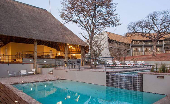 Sun loungers around a swimming pool at Chobe Bush Lodge/