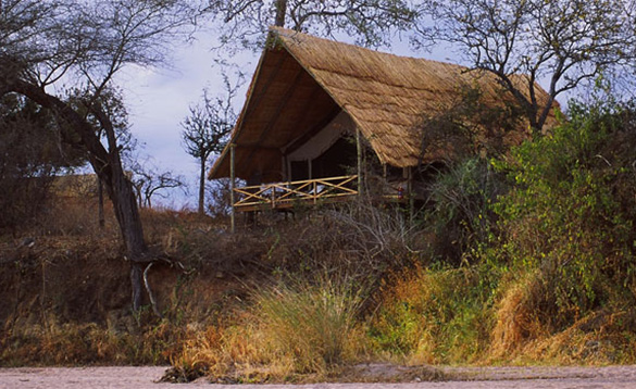 wooden hut with veranda located amongst trees in Africa/