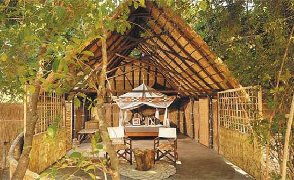 double bed at an african bush camp with linen canopy above bed set underneath a vaulted bamboo and wood ceiling/