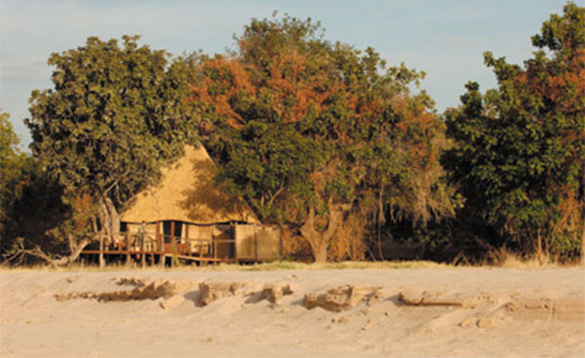 wooden hut set amongst trees at the side of a sandy beach/