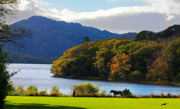 Horse and cart travelling past a lake in Killarney with autumnal trees along the shoreline/