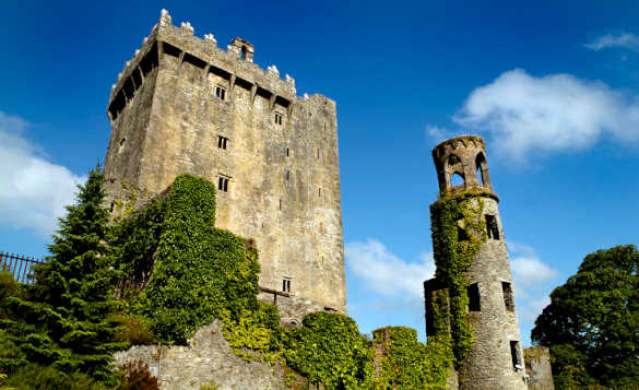 Ivy growing up the walls of Blarney Castle in Ireland/