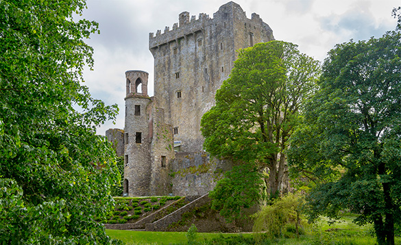 View through trees to Blarney Castle, Co Cork/
