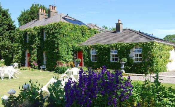 Ivy clad two storey B&B house with single storey extension at Trim, Ireland/