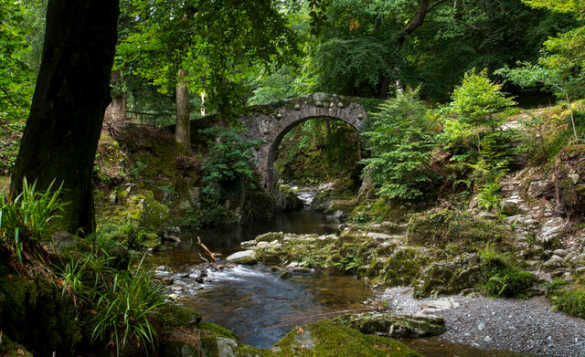 Steam flowing under a stone arched bridge in dappled sunshine in Tollymore Forest, Mourne Mountains/