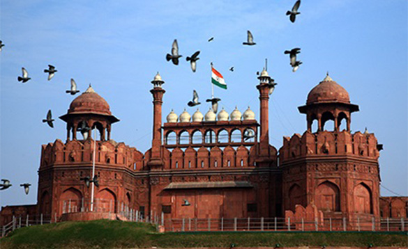 Birds flying over the Red Fort in Delhi, India/