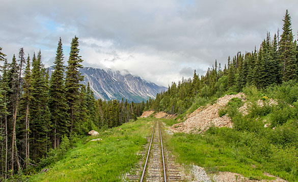 Train track with tall trees on either side and mountains in the distance/