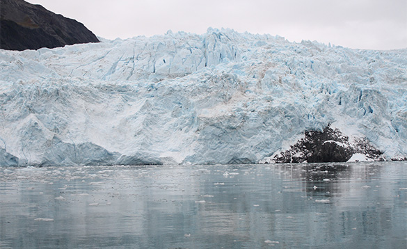Glacier calves into sea near Seward/