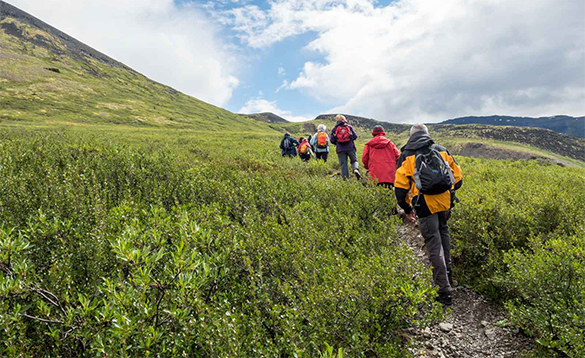Hikers walking across hills in the Yukon/