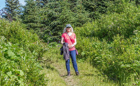 Lady walking along a pathway leading through grassland and forests in Alaska/