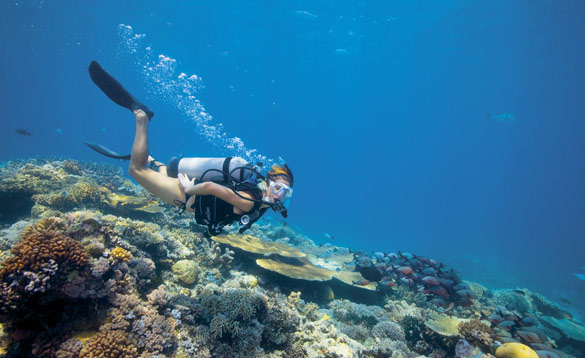 Woman diving around a coral reef in Australia/