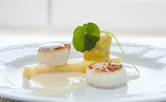 Plate with scallops served onboard a Crystal Cruises ship/