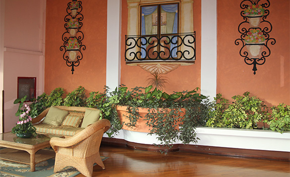 veranda with cane furniture and terracotta walls with green plants growing in pots/