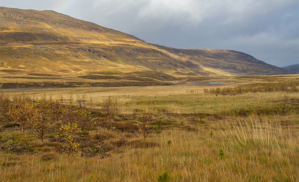 View across barren landscape in Iceland towards hills/