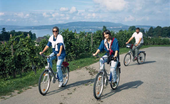 Cyclists biking past a lake on Reichenau Island, Lake Constance, Germany/