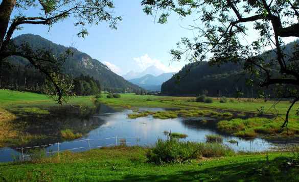 View across a lake towards hills in Berchtesgadener Land, Germany/