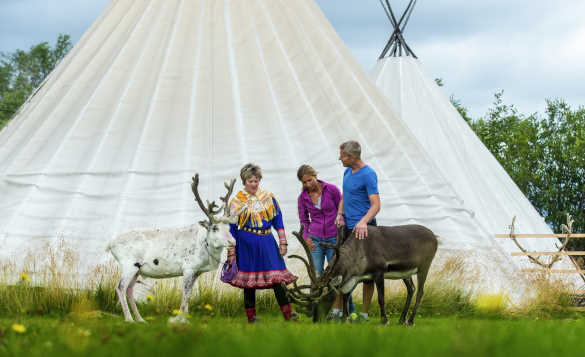 Couple with Sami lady and two reindeers beside tent/