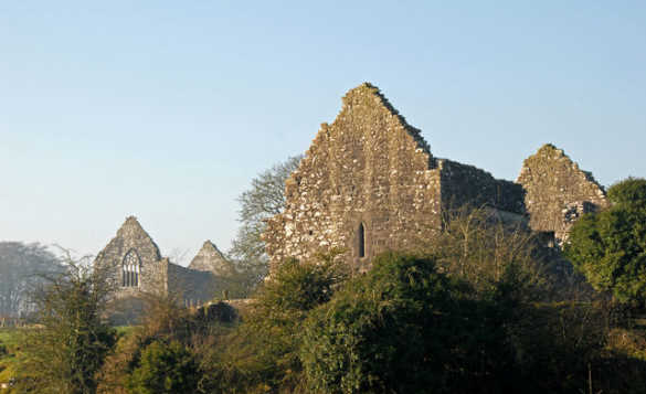 The ruins of Fenagh Abbey set amongst trees in Co Leitrim/
