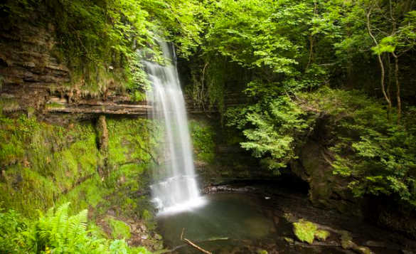 Glencar Waterfall cascading through woodland/
