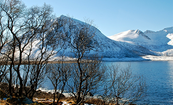 Snow covered mountain at the edge of a fjord/