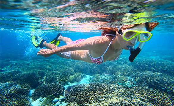 Lady snorkelling around coral/