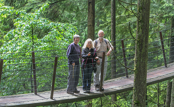 group of three people standing on a bridge suspended amongst trees in a forest/