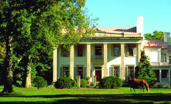 Horse standing beside a white plantation style house in Nashville/